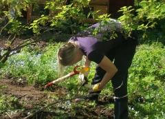 Gartengroßprojekt