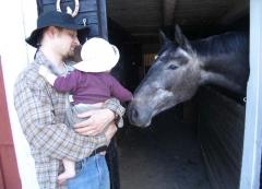 Johannas erster Pferdkontakt