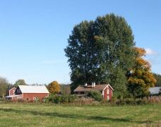 Ännaryd - 6 Häuser und 3 Spitzbuben (mindestens)