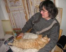 so ein Katzenleben