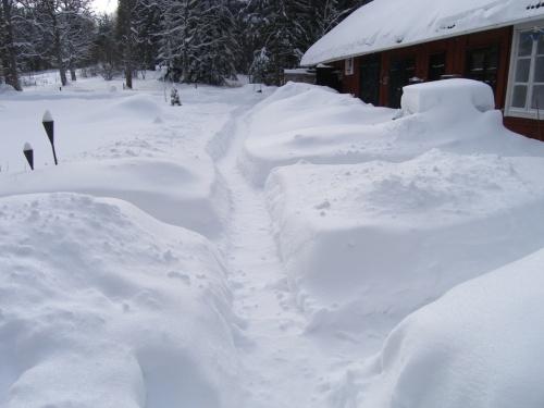 Schneegänge