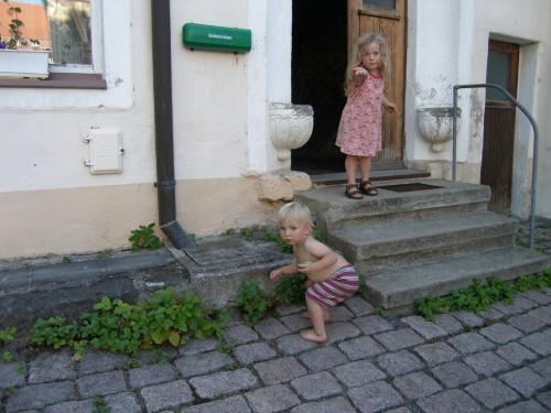 Walderdbeeren vor der Haustür