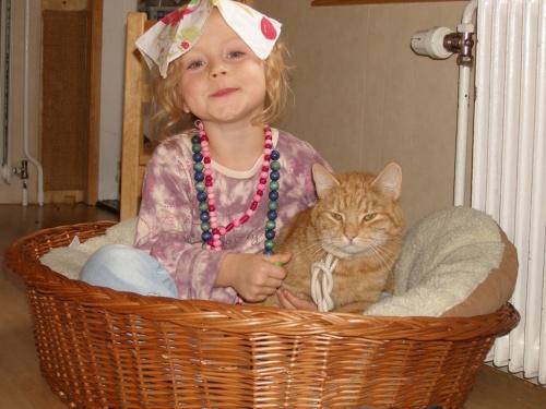 Katzenfolter