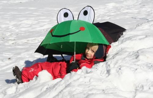 Schneefrosch