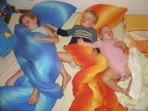Schlafgemeinschaft