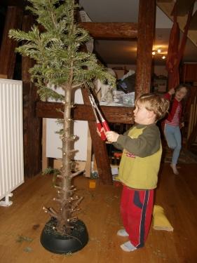 Weihnachtsbaumvernichtung