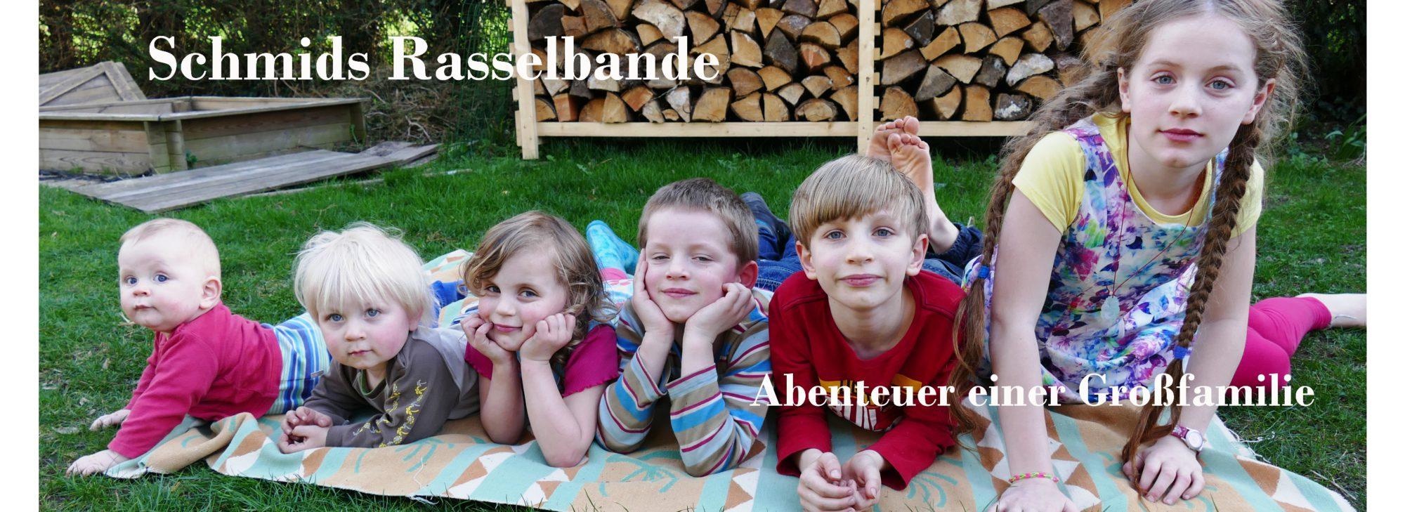 Schmids Rasselbande – Abenteuer einer Großfamilie